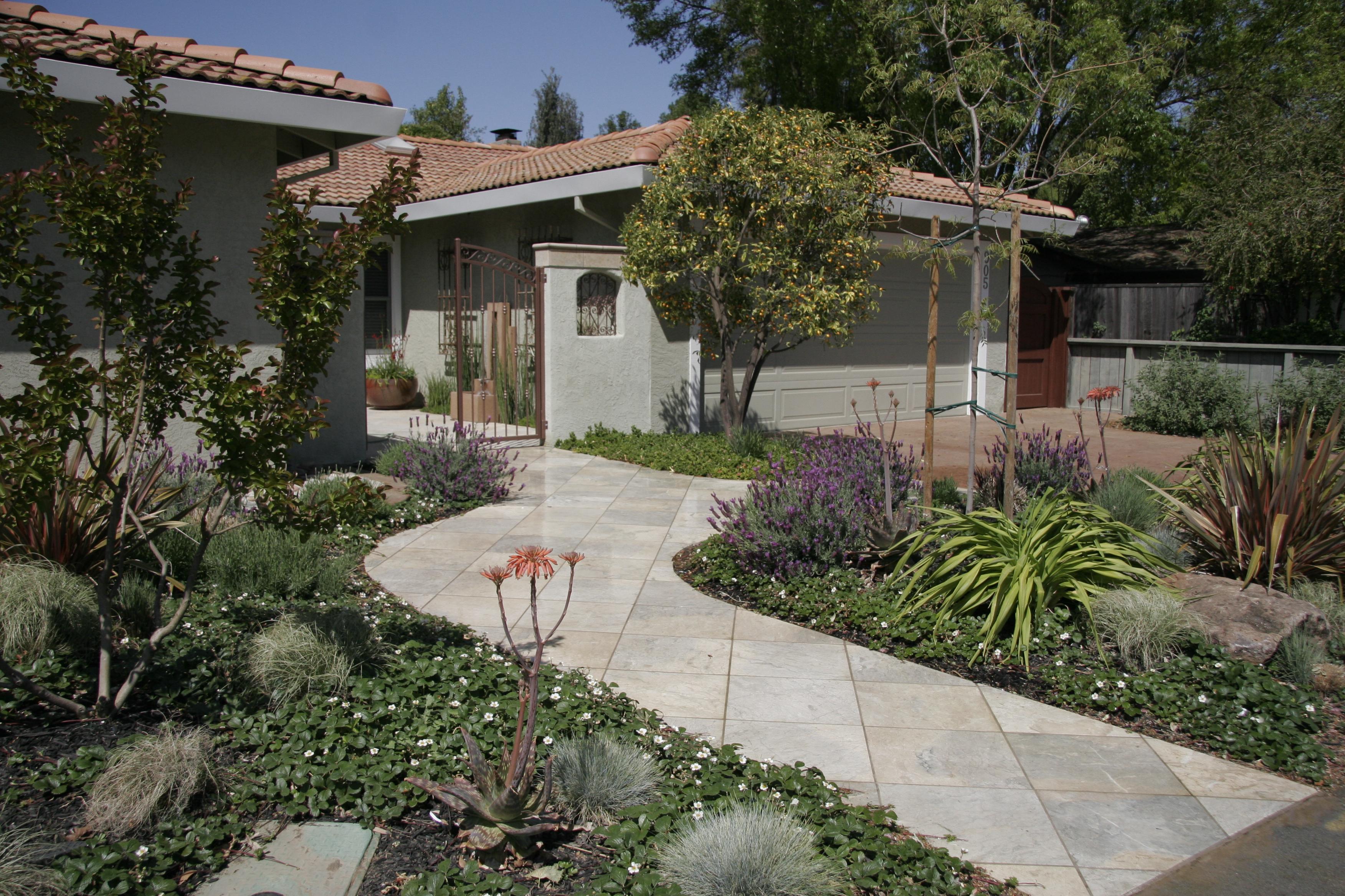 Low maintenance drought tolerant landscape michael - Drought tolerant backyard landscaping ideas ...